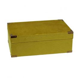 Mustard yellow velvet decor box