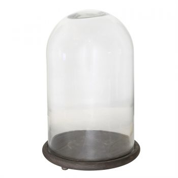 Glass Cloche with Dark Wood Base