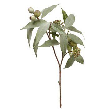 Faux eucalyptus seed spray