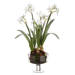 Faux White Narcissus in Glass Bowl