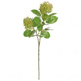 Faux Green Seeding Aucuba Spray