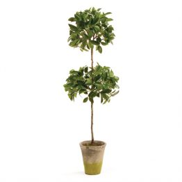 Faux Ficus Topiary Double
