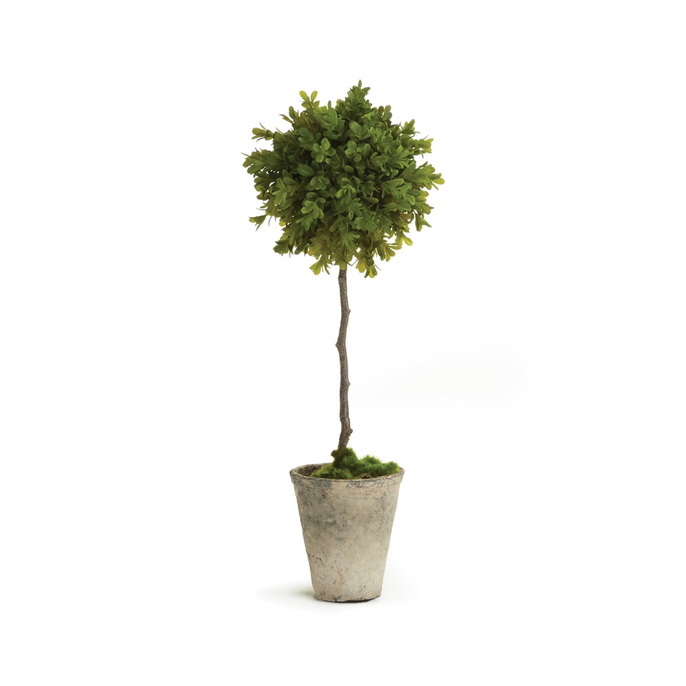 faux potted single boxwood topiary