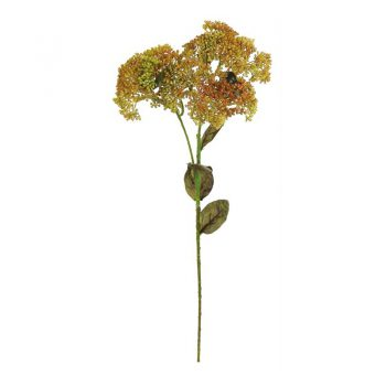 Green And Burgundy Yarrow Seed Cluster Spray