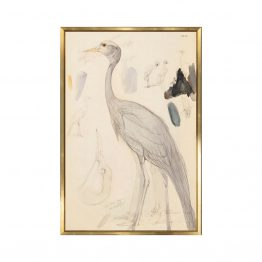 Warm Neutral Demoiselle Crane Watercolor Painting Art