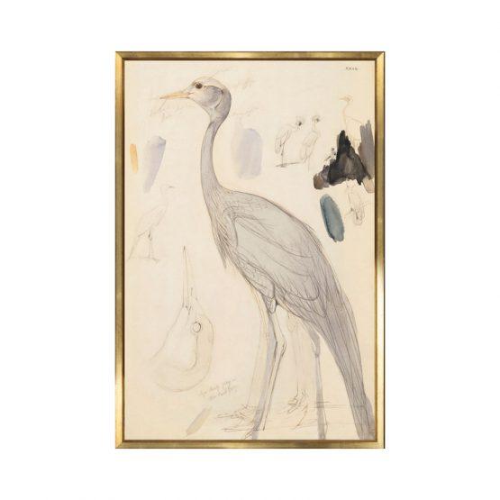 Warm Neutral Demoiselle Crane Watercolor Painting Art