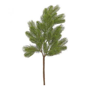 Douglas Fir Pine Branch Spray