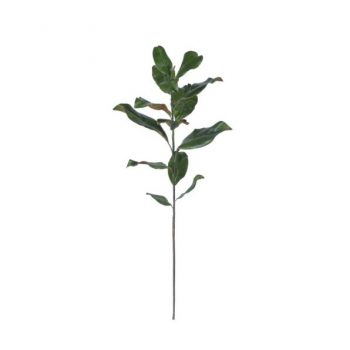 Magnolia Stem Pick