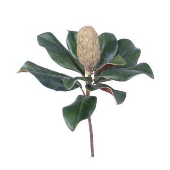 Magnolia Stem Pick With Bud